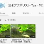 アクアリウムのYouTubeをはじめました。