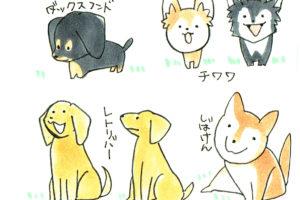 【第13回】丸と三角で簡単に犬を描こう!