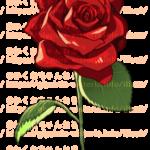 【動画】薔薇の描き方【デジタルモチーフ作画】